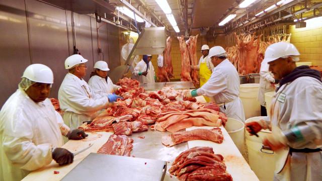 Mundo tem que reduzir consumo de carne para alimentar 10 bi em 2050