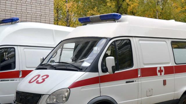 Cães seguem ambulância e esperam dono ser atendido em hospital