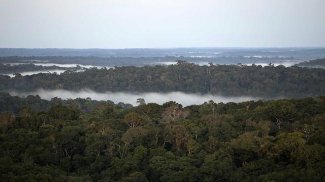 Governo Bolsonaro planeja pacote de obras na Amazônia