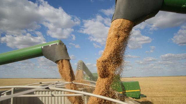 Clima derruba safra de soja no Brasil