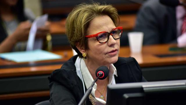 Ministra quer ir à China para ampliar exportação de carnes e soja