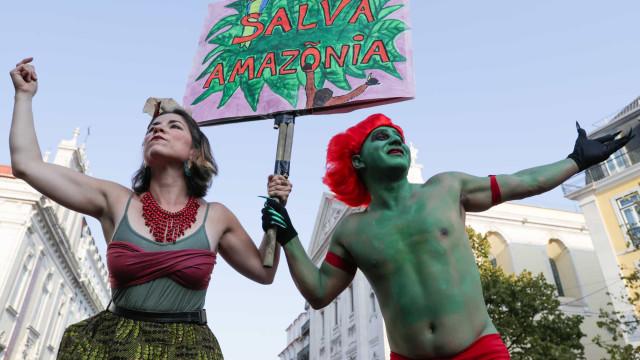 Ambientalistas defendem que proteção da Amazônia é crucial