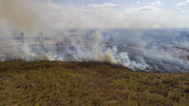 Brasil regista maior desmatamento da Amazônia para abril em 10 anos