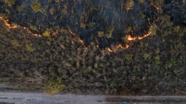 Incêndios na Amazônia diminuem em agosto, mas aumentam no Pantanal