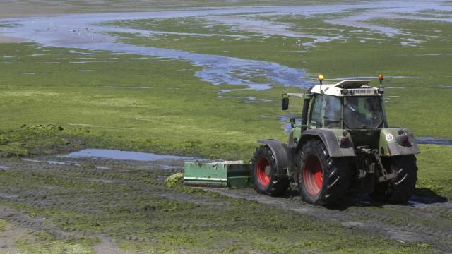 'Uber' de tratores aumenta produtividade  de pequenos agricultores