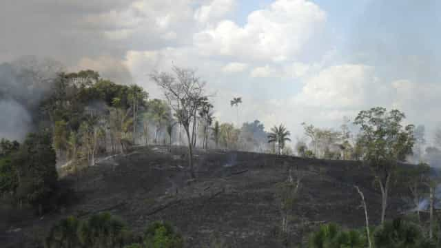 Saiba como prevenir queimadas neste período seco do ano