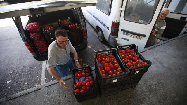 Agronegócio tem superávit de US$ 8,1 bilhões em julho