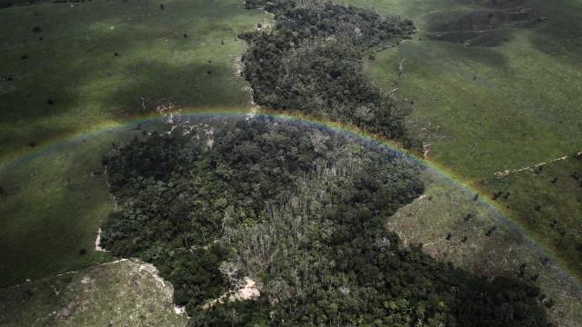 Decretos aprovam demarcação no Amazonas e Pará
