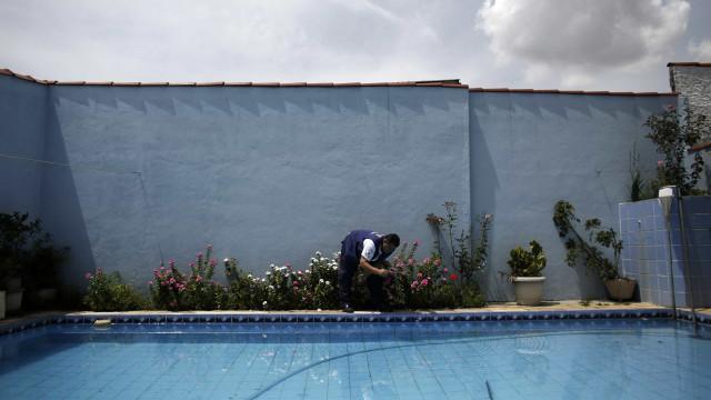 Espelhos d'água de SP recebem cloro contra 'Aedes aegypti'