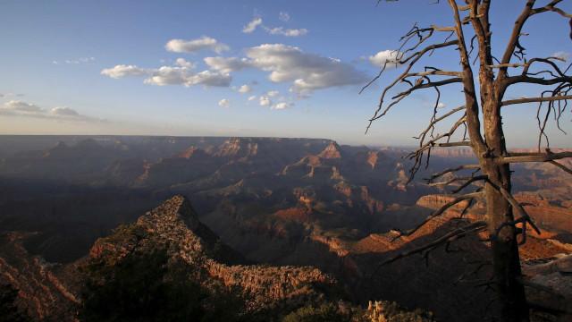 Homem cai em precipício no Grand Canyon; é a terceira morte em 8 dias