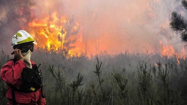 Incêndio na mata de São Lourenço da Serra já dura oito horas