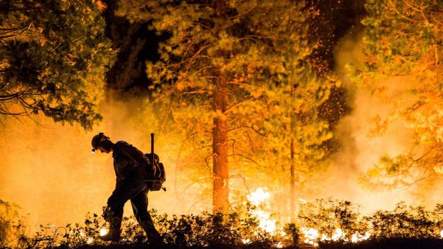 Incêndio florestal atinge Portugal e fere 32 pessoas