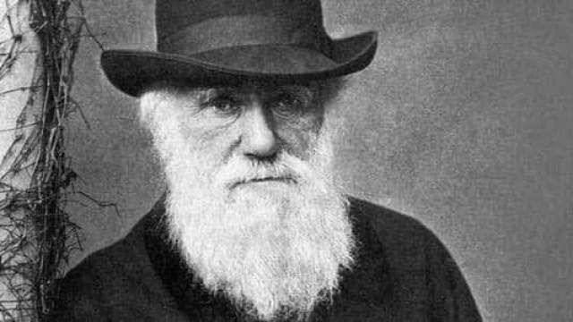Pesquisadores revelam o que queria Darwin ao publicar obra