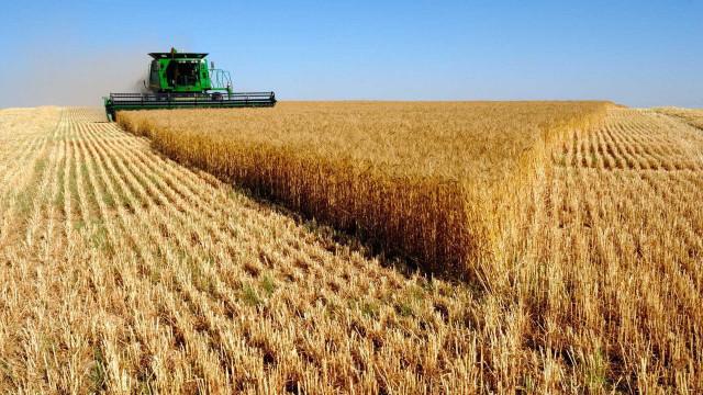 Venda de inteligência visa atrair estrangeiros no agronegócio