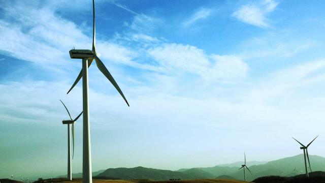 Geração eólica no Nordeste cresceu 27% em agosto