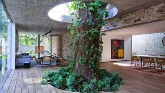 14 imagens inspiradoras da arquitetura respeitando  o meio ambiente; veja