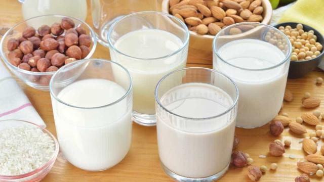Saiba quais bebidas vegetais substituem o leite de vaca