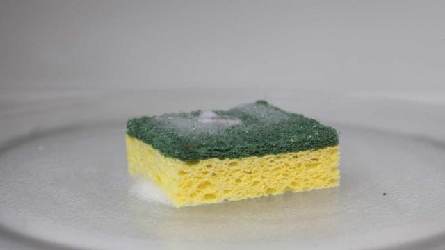Descubra a frequência que se deve trocar a esponja de cozinha