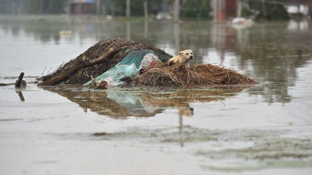 Chuvas e inundações deixam pelo menos 21 mortos no Iraque