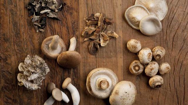Coma cogumelos e aumente as defesas