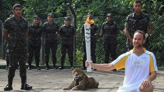 MP desiste de ação contra Exército pela  morte de onça em Olimpíadas