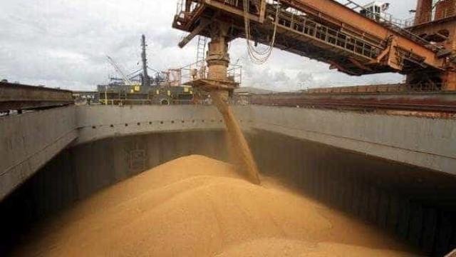 Safra recorde de grãos  corre o risco de ir pelo ralo