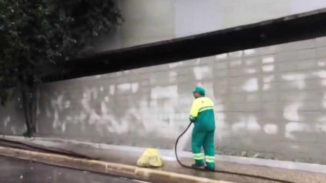 Muro da 23 de Maio começa a receber plantas após remoção de grafite