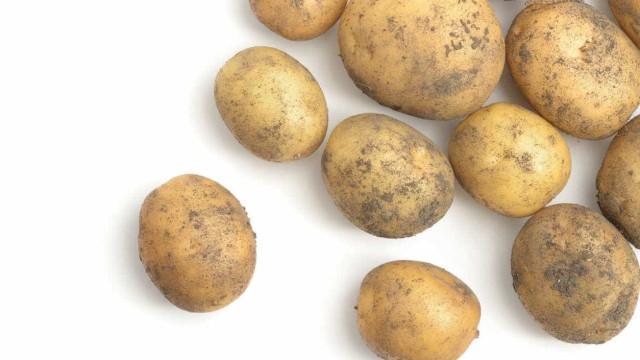 Preço da batata quadruplica com falta de produtos na Ceasa do Rio