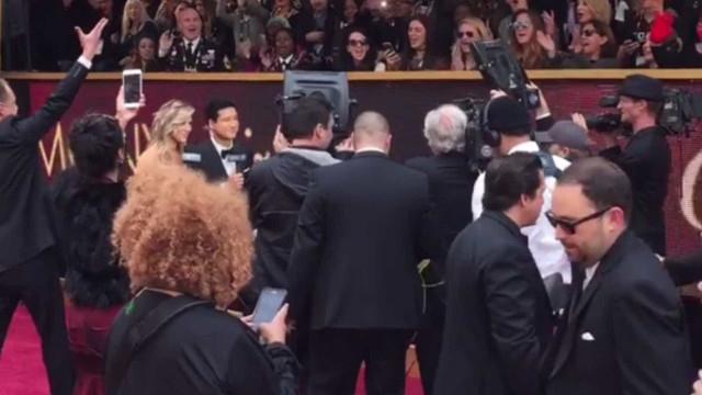 Tapete vermelho: Confira os ensaios para a cerimônia do Oscar