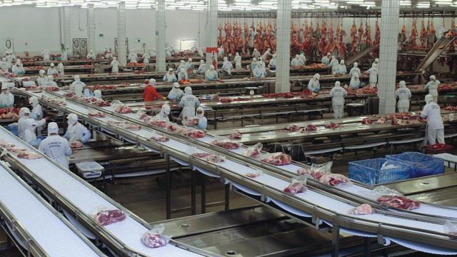 Contágio pela Covid-19 reduz produção e suspende abates em frigoríficos