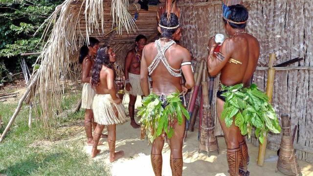 Entidade denuncia Brasil por 'risco de genocídio' de povos indígenas
