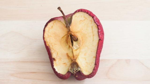 Novo produto promete aumentar o tempo de vida de frutas e hortaliças