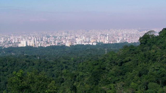 Prefeitura de SP assina contrato para erguer 13 mil moradias populares