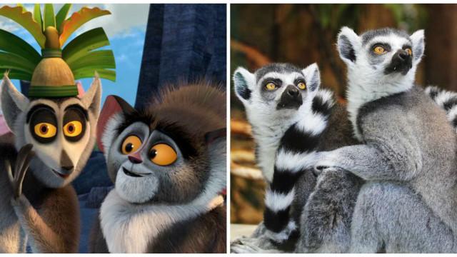 Conheça 30 animais geniais (e geniosos!)  que amamos das animações