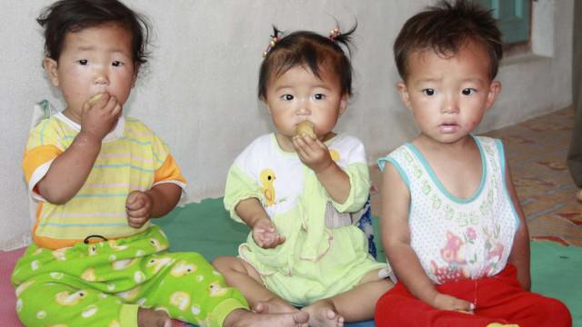 Coreia do Norte tem pior seca em 16 anos e precisará importar comida