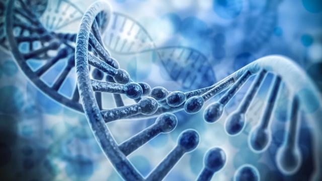 Cientistas anunciam melhorias em técnica de edição genética