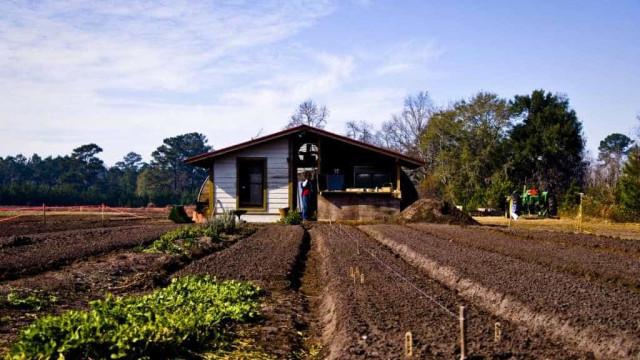 Setor de turismo abre potencial de negócio para agricultura familiar
