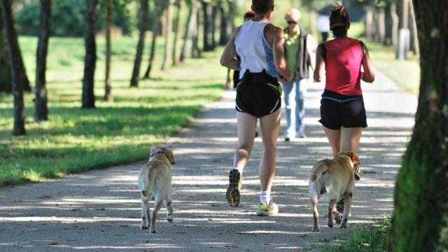 Vida longa. Quantos minutos de exercício físico são precisos?