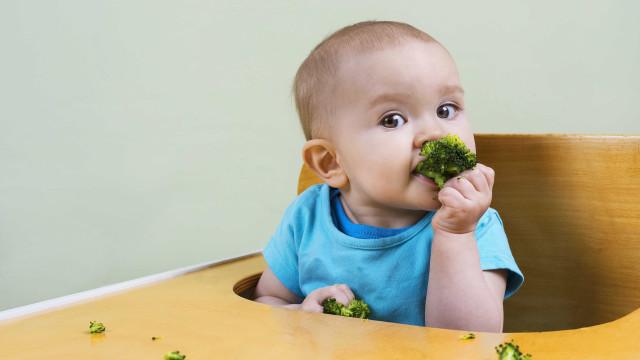 5 alimentos que ajudam a desenvolver a inteligência da criança