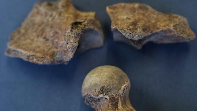 Polícia investiga suspeitos de vender ossadas humanas de cemitério de SP