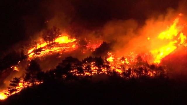 Imagens impressionantes dos incêndios florestais na Itália