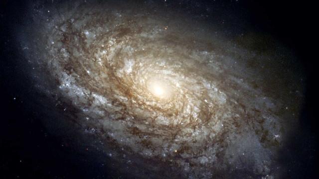 Humanidade encontrará vida extraterrestre até 2100, diz ex-astrônoma