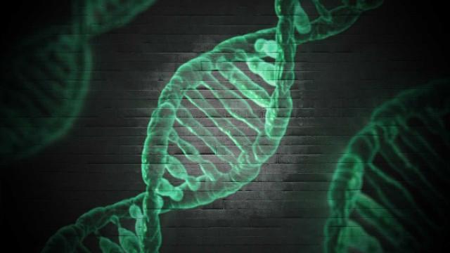 Gêmeos devem pagar pensão a criança após DNA apontar os 2 como pais