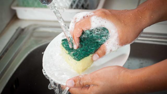 Saiba com que frequência deve substituir a esponja da cozinha