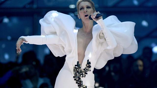 Céline Dion cancela 14 shows no EUA por problema de audição