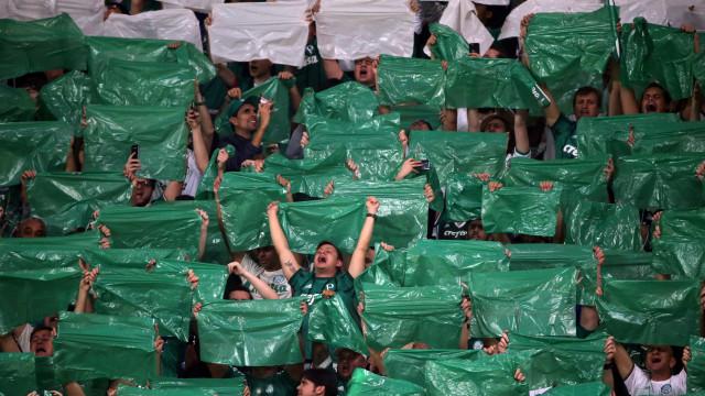 Quem 'sobrevive' e quem está no foco da crise no Palmeiras