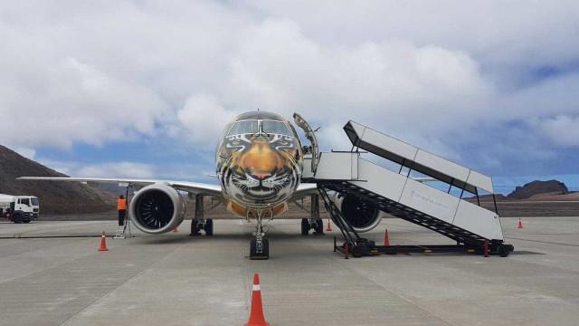 Artista pinta aeronaves da Embraer com desenhos realistas