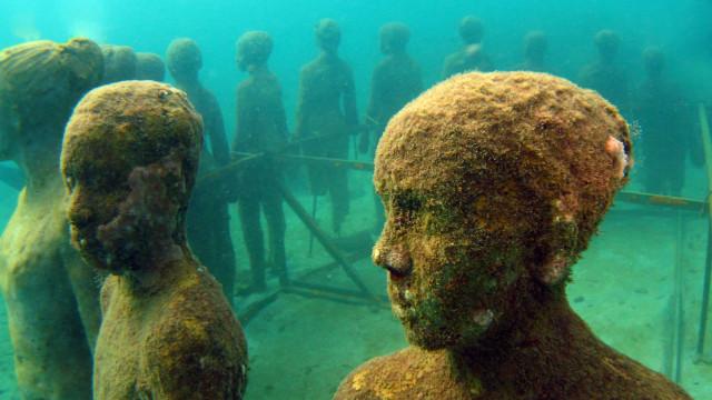 Mergulhe nessas incríveis atrações submersas!