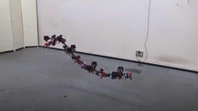 Serpente voadora: conheça um dos drones mais esquisitos já inventados