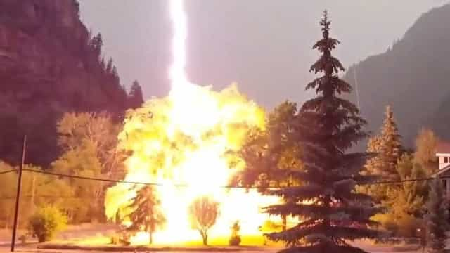 Vídeo: relâmpago atinge árvore em frente a casa no Colorado